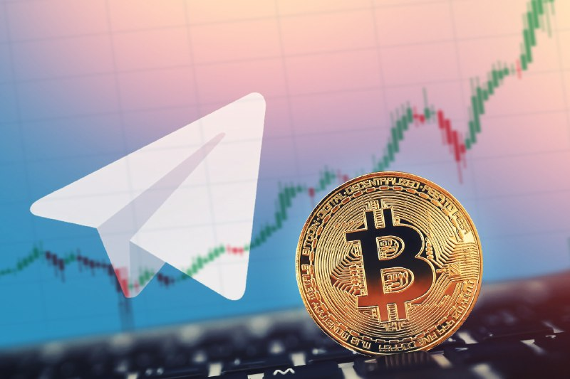 OpenMinds™ Hong Kong | 5 Things to Note in Telegram Community